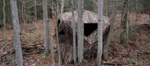 Ground Hunting Blind