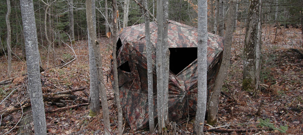 turkey hunting tips for beginners