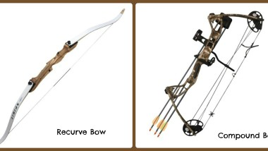 Recurve vs Compound Bows for Deer Hunting
