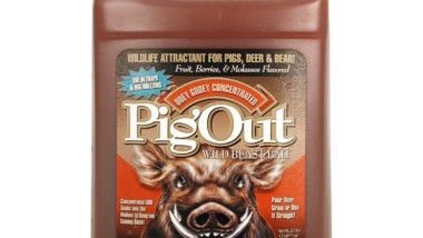 Hog Baiting Tips: The Best Hog Bait Attractant and a Homemade Recipe
