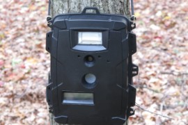 20 Trail Camera Tips and Tricks for Better Results