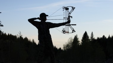 How to Choose the Best Compound Bow: Our Top 5 Reviewed