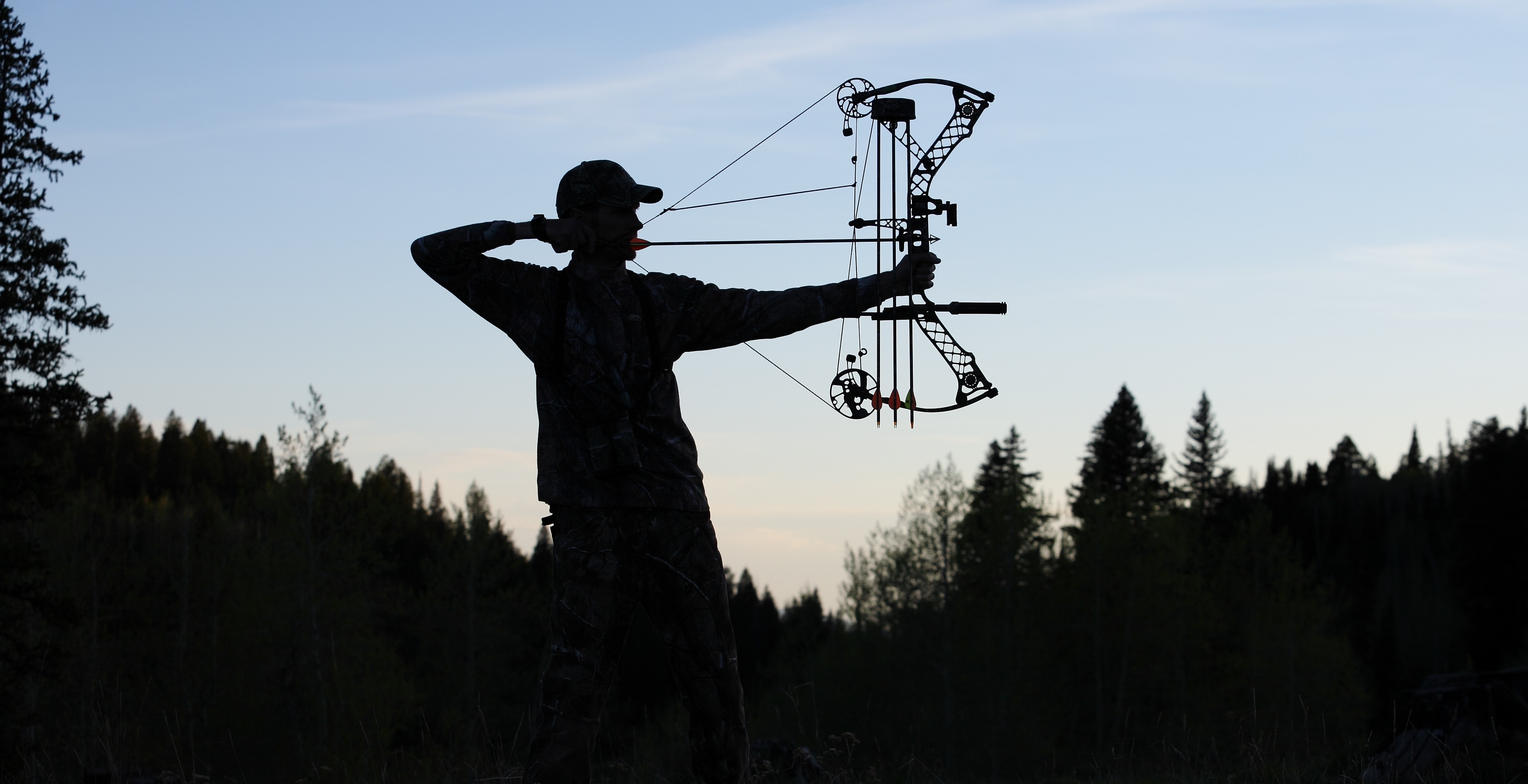 compound bow reviews