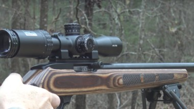 The Best Scope for Ruger 10/22 Rifles [TOP 5 Suggestions]